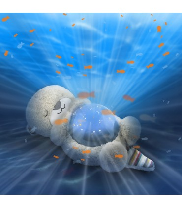 Zazu Cody-Otto Ocean Projector